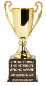 You're Doing the Internet Wrong Award